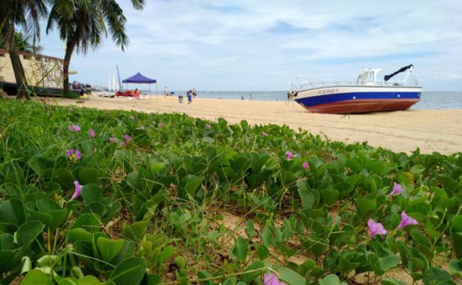 万博竞彩客户端下载万博体育下载网站攻略 西秀海滩沙滩